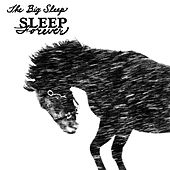 Sleep Forever by The Big Sleep