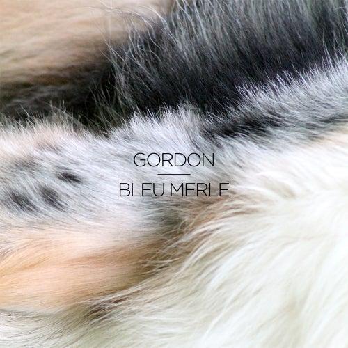 Bleu merle - EP by Gordon