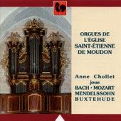 Bach - Mendelssohn - Mozart - Buxtehude: Orgues de l'Eglise Saint-Etienne de Moudon by Anne Chollet