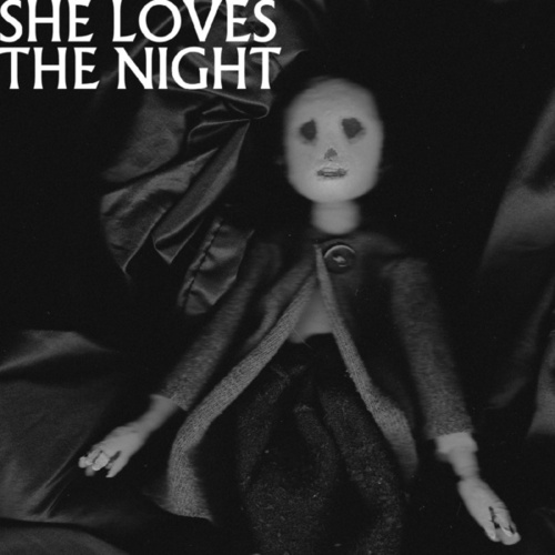She Loves The Night by Then Comes Silence