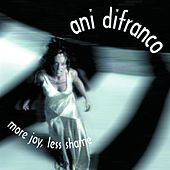 More Joy, Less Shame by Ani DiFranco