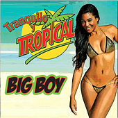Tranquilo y Tropical by Big Boy