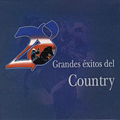 28 Grandes Éxitos del Country by Various Artists