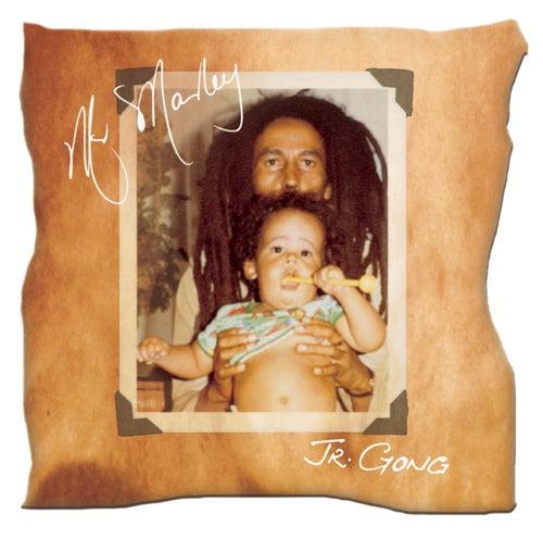 Mr. Marley by Damian Marley