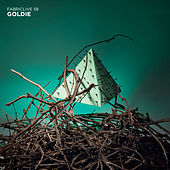 FABRICLIVE 58: Goldie by Various Artists