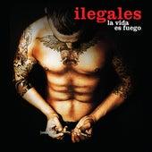 La Vida Es Fuego by Ilegales