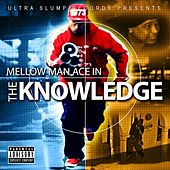 The Knowledge - Single by Mellow Man Ace