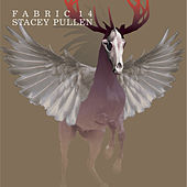 fabric 14: Stacey Pullen von Various Artists