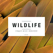 Wildlife, Vol. 4 by Various Artists