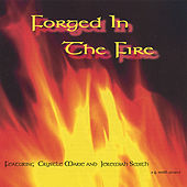Forged In The Fire by Various Artists