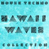 Techno & House - Hawaii Waves Collection by Various Artists