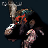 fabric 13: Michael Mayer by Various Artists