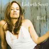 Bird by Lisbeth Scott
