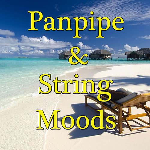 Panpipe & String Moods, Vol. 2 by Wildlife