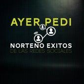 Ayer Pedi: Norteno Exitos de las Redes Sociales by Various Artists