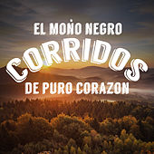 El Mono Negro: Corridos de Puro Corazon by Various Artists