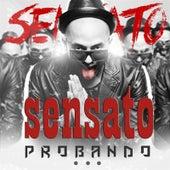 Probando by Sensato
