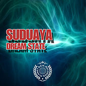 Dream State by Various Artists