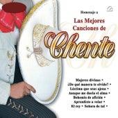 Homanaje a las Mejores Canciones de Chente by Mariachi Arriba Juarez