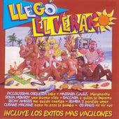 Llegó el Verano by Various Artists