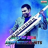 Best of 2014:  Anup Musical Hits by Various Artists