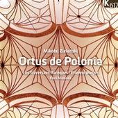Zieleński: Ortus de Polonia by Various Artists