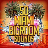 50 Miami Bigroom Sounds by Various Artists