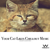Your Cat Likes Chillout Music - Chillout Collection by Various Artists