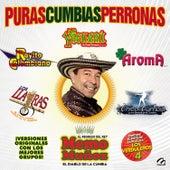 El Diablo de la Cumbia y Grupos Invitados by Various Artists