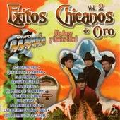 Éxitos Chicanos de Oro Vol. 2… (De Amor y Contra Ellas) by Grupo Lluvia