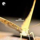 Forgotten Poetry by Rodrigo Leão