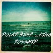 Rosehip - Single by Polar Bear