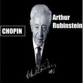 Arthur Rubinstein by Arthur Rubinstein