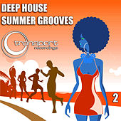 Deep Summer Grooves Vol. 2 by Various Artists