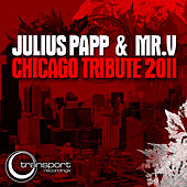 Chicago Tribute 2011 by Mr. V