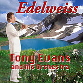 Edelweiss by Tony Evans