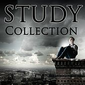 STUDY Collection by Various Artists