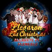 Llegaron las Christmas (feat. Plenealo) by La Banda Algarete