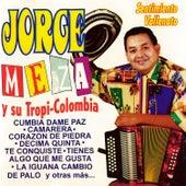 Sentimiento Vallenato by Jorge Meza Y Su Tropicolombia