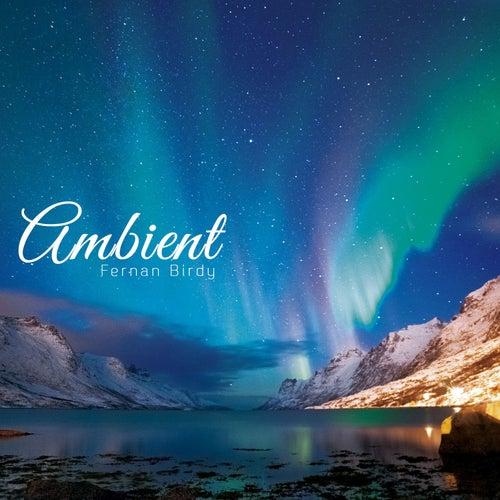 Ambient by Fernanbirdy