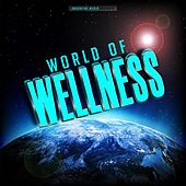 World of Wellness by Various Artists
