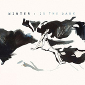 In the Dark by Winter
