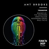 Transfer by Ant Brooks