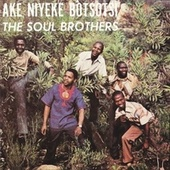 Ake Niyeke Botsotsi by The Soul Brothers