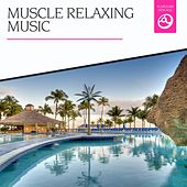 Muscle Relaxing Music by Various Artists