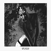 Qualia by Evil Needle