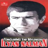 Türkülerimiz Var Söylenecek by Various Artists