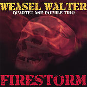 Firestorm by Weasel Walter
