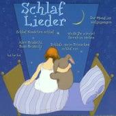 Schlaflieder by Various Artists