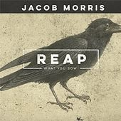 Reap What You Sow by Jacob Morris